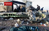 Three-Britons-among-176-killed-in-Iran-plane-crash